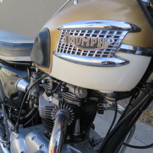 1964 Triumph Bonneville  photo