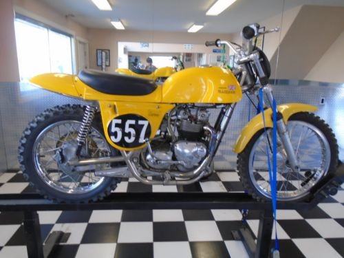 Triumph: Metisse Yellow photo