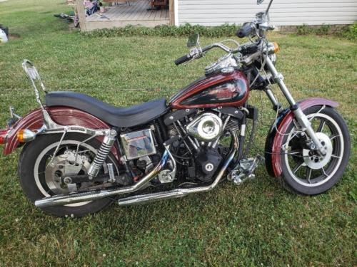 1981 Harley-Davidson Other  photo