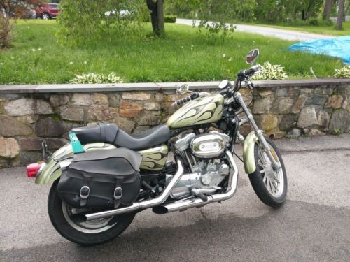 2006 Harley-Davidson Sportster CUSTOM GREEN WITH BLACK GHOST FLAMES for sale craigslist