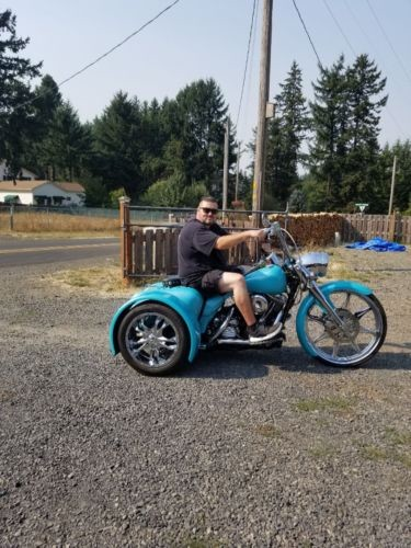 2017 Harley-Davidson 1995 road king Teal photo
