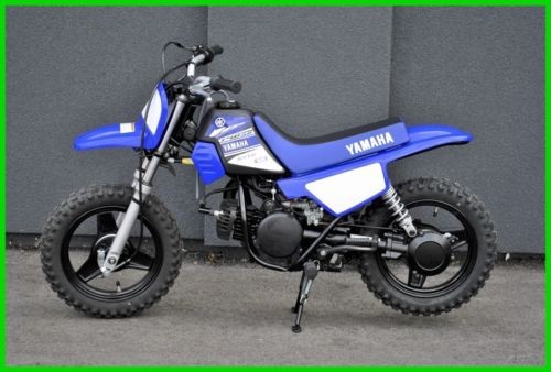 2017 Yamaha PW Blue photo