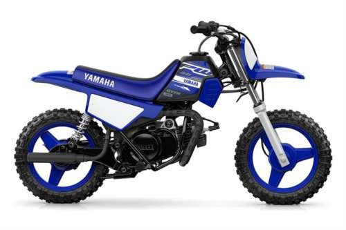 2019 Yamaha PW50 -- Blue for sale