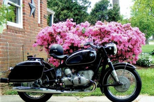 1967 Other Makes BMW R50/2 Black photo