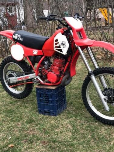1981 Honda CR Red photo
