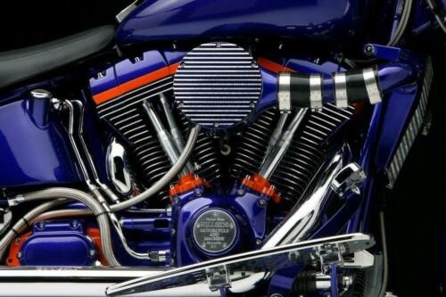 1986 Harley-Davidson Softail Purple photo