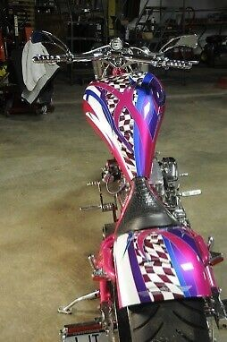 2005 Bourget Python Purple photo