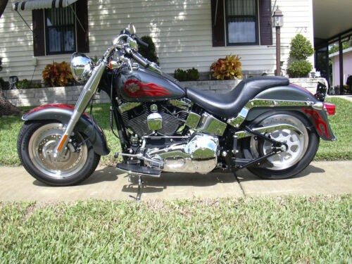 2005 Harley-Davidson Softail Gray photo