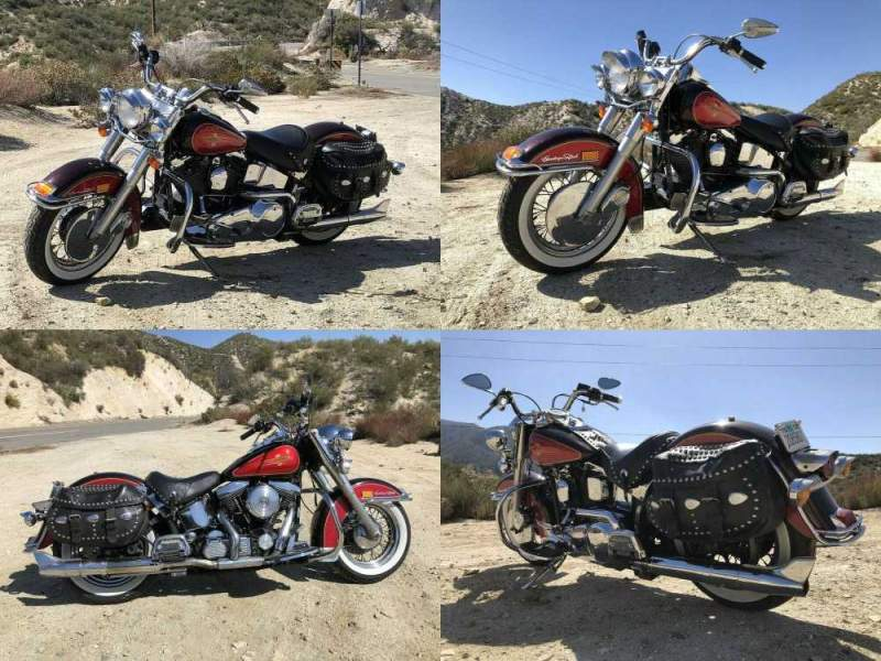 1991 Harley-Davidson Softail  used for sale