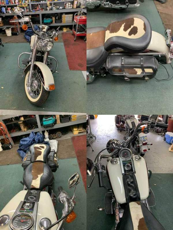 1993 Harley-Davidson Softail  used for sale