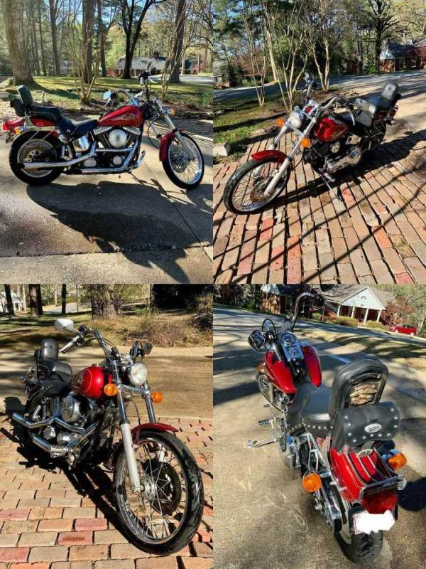 1998 Harley Davidson Softail   for sale craigslist