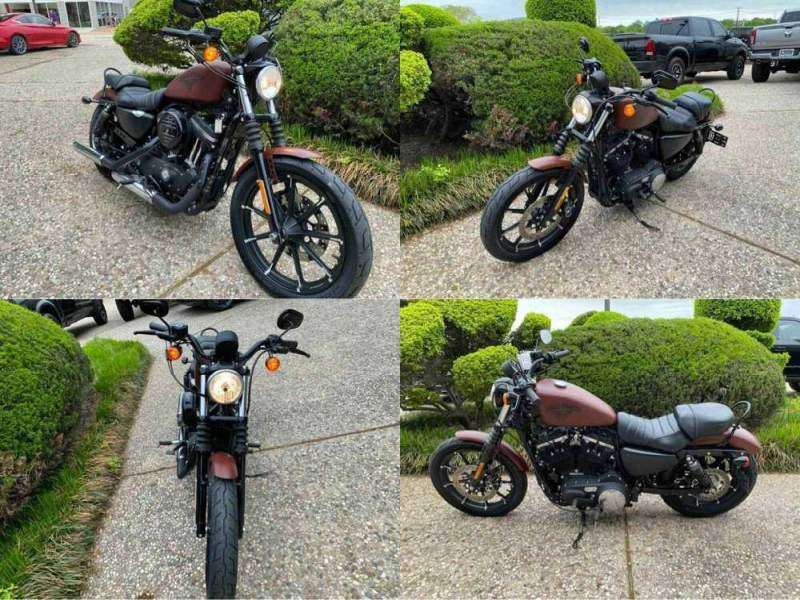 2017 Harley-Davidson Iron 883 XL883N Brown used for sale