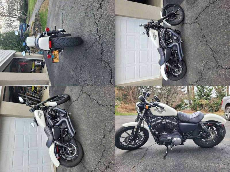 2018 Harley-Davidson Iron 883 White used for sale