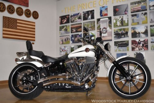 2014 Harley-Davidson Touring BREAKOUT FXSB Gold for sale
