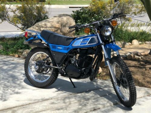 1977 Yamaha DT250D Blue for sale