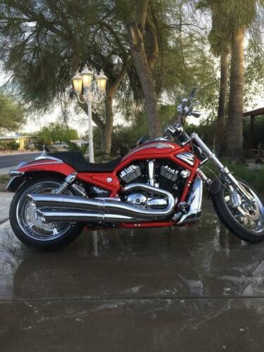 2006 Harley-Davidson V-ROD Scarlet Red Pearl / Charcoal Slate for sale