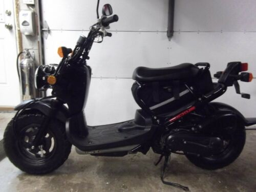 2012 Honda Ruckus NPS50 Black for sale