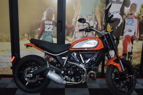2019 Ducati Scrambler Icon Orange Orange craigslist