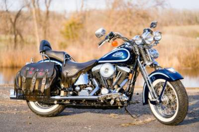 1999 Harley-Davidson Softail Blue/Silver for sale
