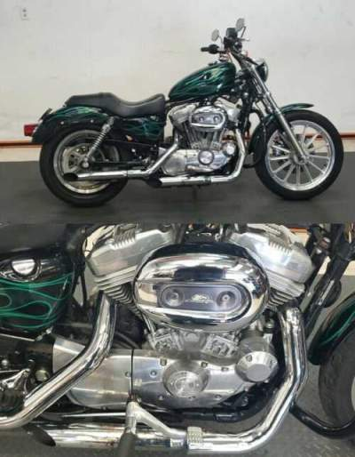 2005 Harley-Davidson Sportster 883 Green for sale