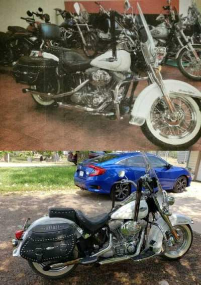 2006 Harley-Davidson Softail Arctic White, Blue Pearl Overlay for sale craigslist