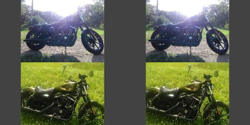 2016 Harley-Davidson Sportster 883 IRON OLIVE GOLD for sale
