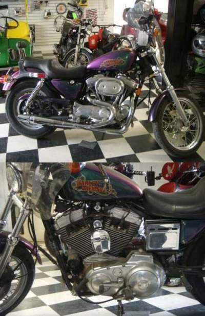 1993 Harley-Davidson Sportster PURPLE for sale craigslist
