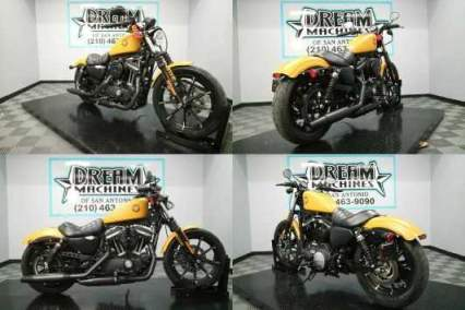 2019 Harley-Davidson XL 883N - Sportster Iron 883 Gold for sale