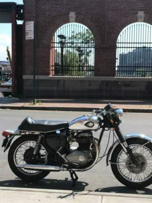 1967 BSA Lightning A65 Silver for sale craigslist photo