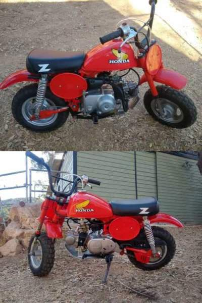 1981 Honda Z50R Red for sale craigslist photo
