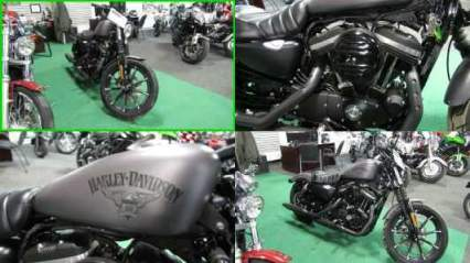 2016 Harley-Davidson Sportster Iron 883 Gray for sale