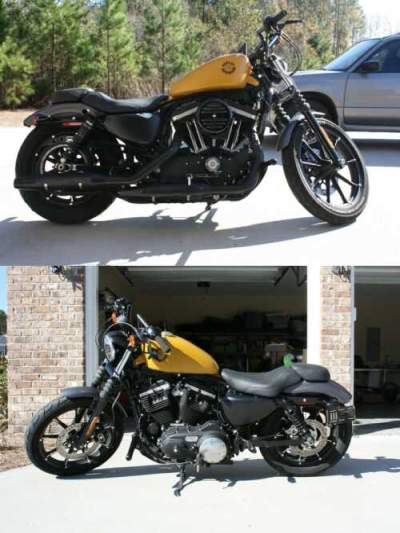2017 Harley-Davidson Sportster Yellow for sale craigslist photo