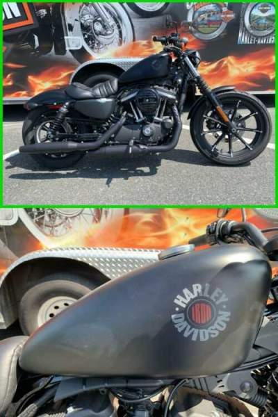 2020 Harley-Davidson Sportster Iron 883 Black Denim for sale