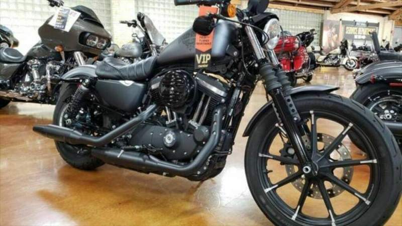 2019 Harley-Davidson XL 883N - Sportster® Iron 883™ Black used for sale