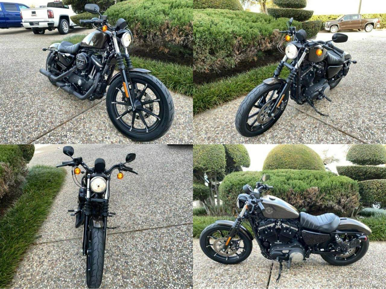 2020 Harley-Davidson Iron 883 XL883N Gray used for sale