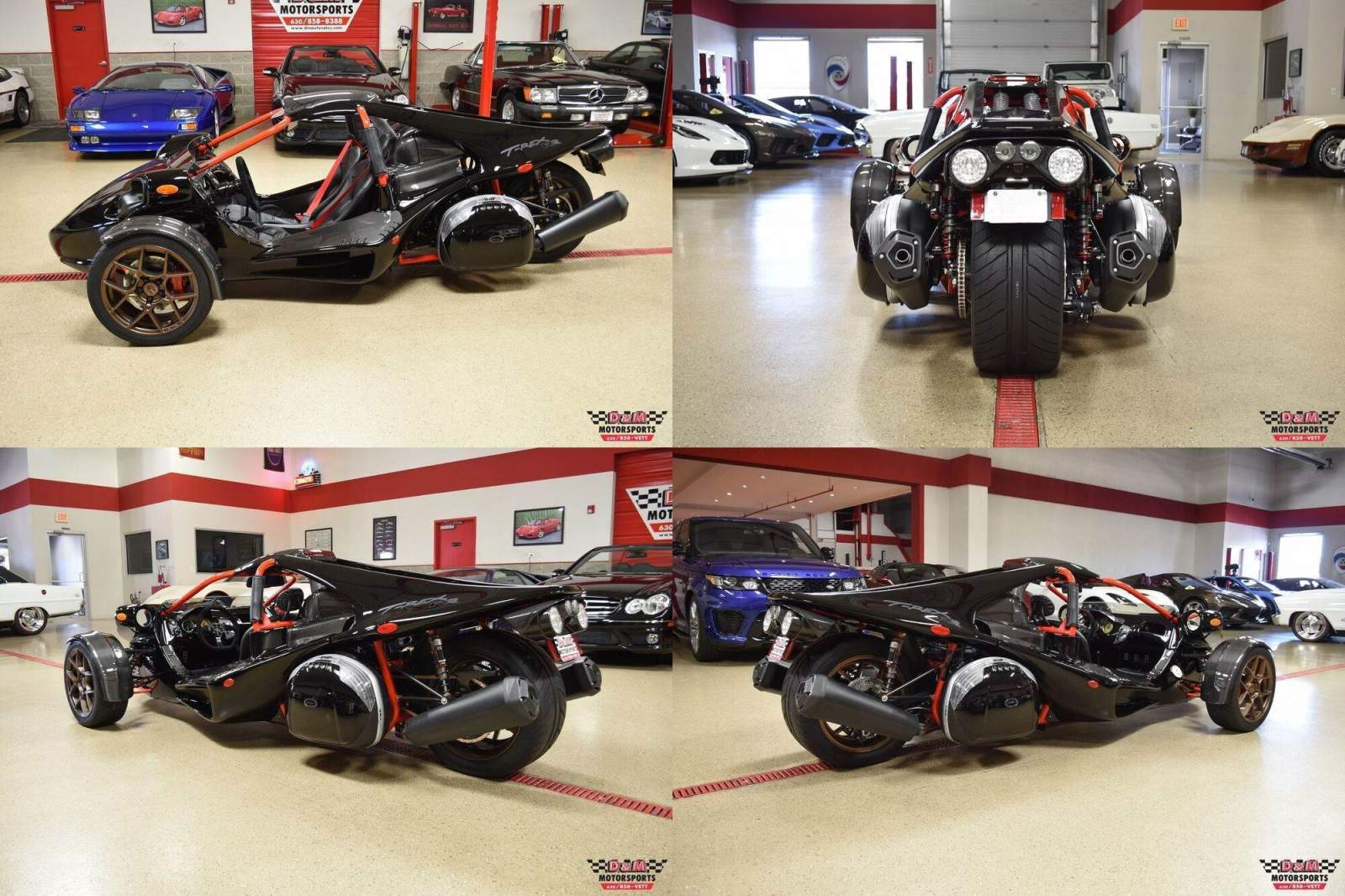 2021 Campagna T-Rex RR Black new for sale